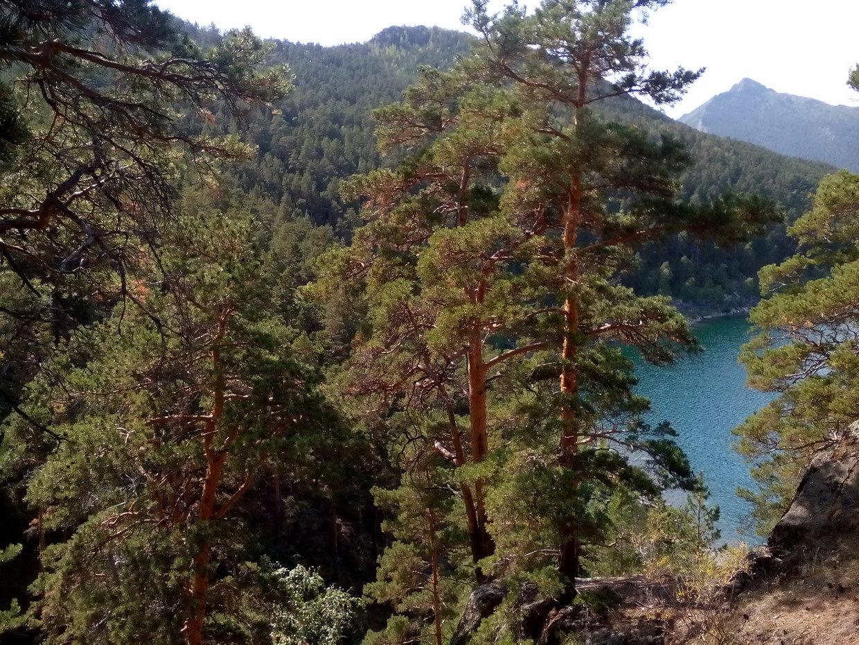 Синюха и Большое Чебачье озеро